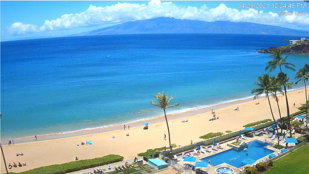 ハワイの様子をライブカメラで楽しむ!
